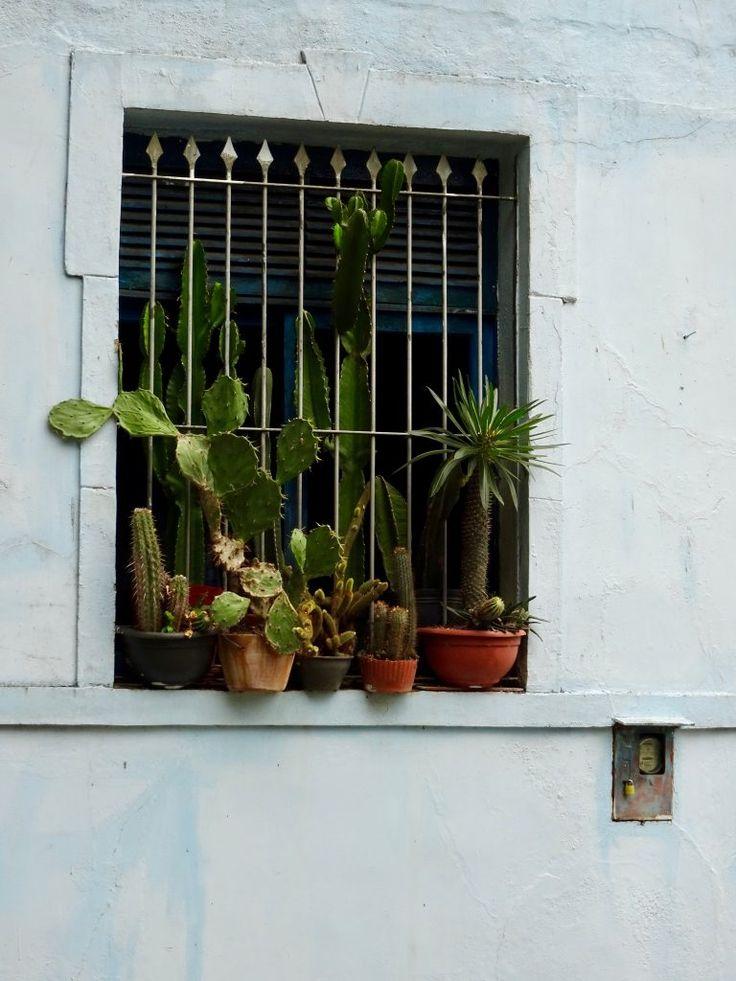 Seen in Santa Teresa, Rio