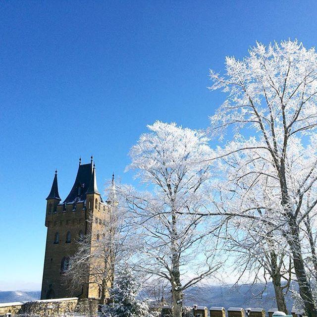 【kazari1217】さんのInstagramをピンしています。 《#ドイツ #南ドイツ #ヨーロッパ #deutschland #germany #europe #europa #southgermany #süddeutschland #burghohenzollern #castle #schloss #burg #hehingen #ヘッヒンゲン #城 #ホーエンツォレルン城 #霜桜 #桜 #霜 #雪 #cherryblossom #frost #snow #schnee #kirschbaum》