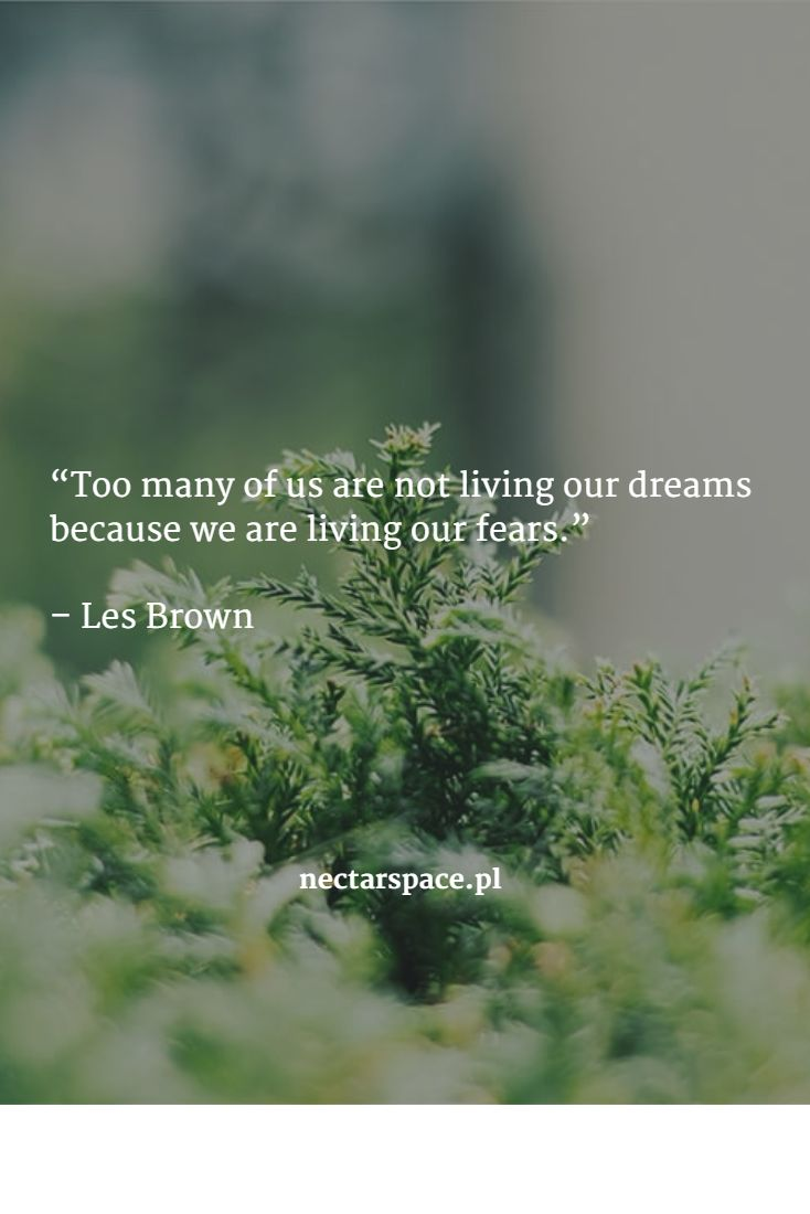 """Too many of us are not living our dreams because we are living our fears.""   – Les Brown"