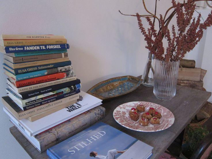 Books by Elsa @ Villa Gress
