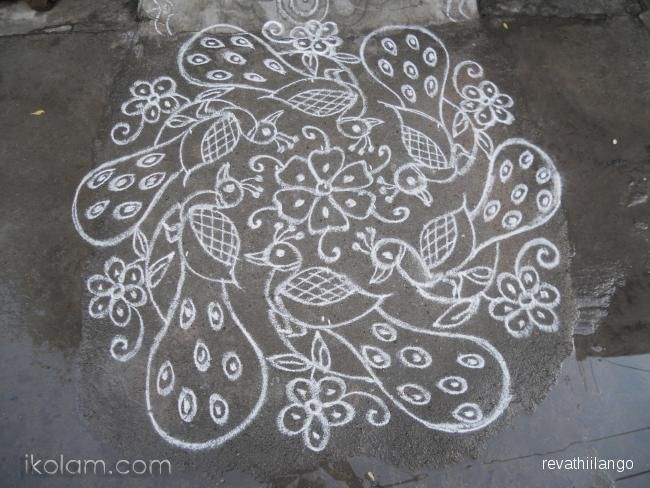 Rangoli 7 to 4 intermediate dots;: Peacock rangoli in white. by revathiilango