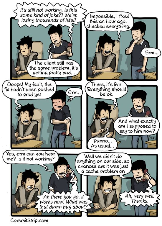 Blame the cache | CommitStrip