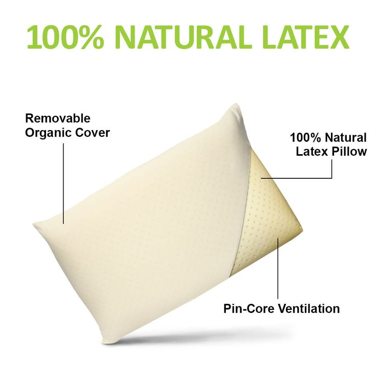 All Natural Latex Pillow  with Organic Cotton Cover  Standard  SIZES