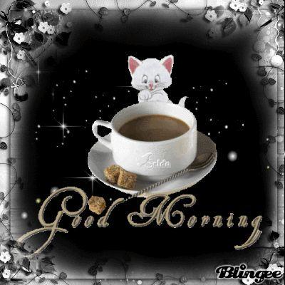 Good morning ✨sweet ✨Sparkle ❤️..fɾσм (Ꭰọŗєєṅ Ꮢọṡṡєṭṭọ)❦/ Peek A Boo?. I see you! .. Cute pin! TY sissy❤️