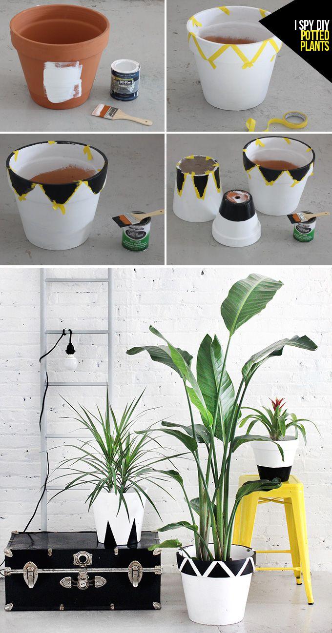MY DIY | Potted Plants | I SPY DIY