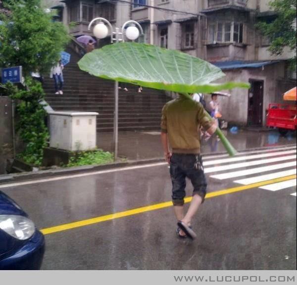 Tak Ada Payung Apapun Jadi ;D