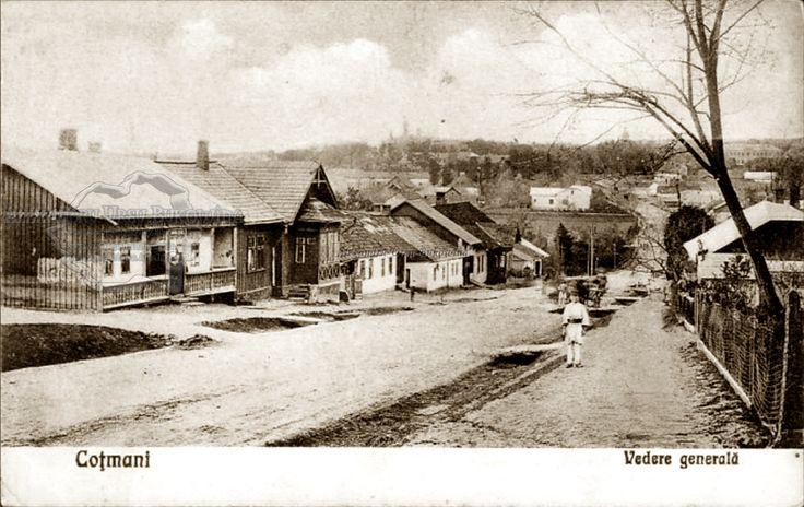 Cernăuţi. Plasa Şipeniţi. Oraşul Cozmeni. (Coțmani). 1928