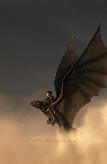 Hiccup Horrendus Haddock the III & Toothless - How to Train Your Dragon II