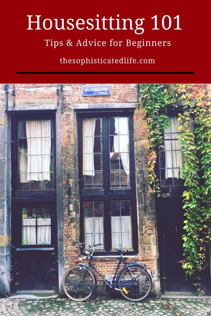 Housesitting 101! Tips and advice for beginners from owners and sitters! Have you considered doing a housesit for your next vacation?