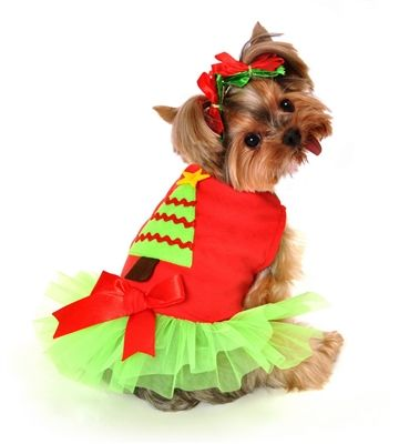 Christmas Tree Dress Dog Costume