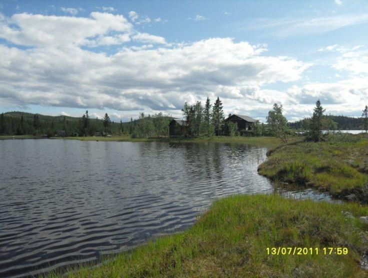 13.07.11 Hedalen i Valdres / Helseren