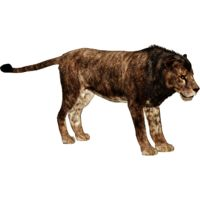 Cave Lion (Panthera leo spelaea)Edit Creator: Ultamateterex2 UXP: None Status: Available Release...