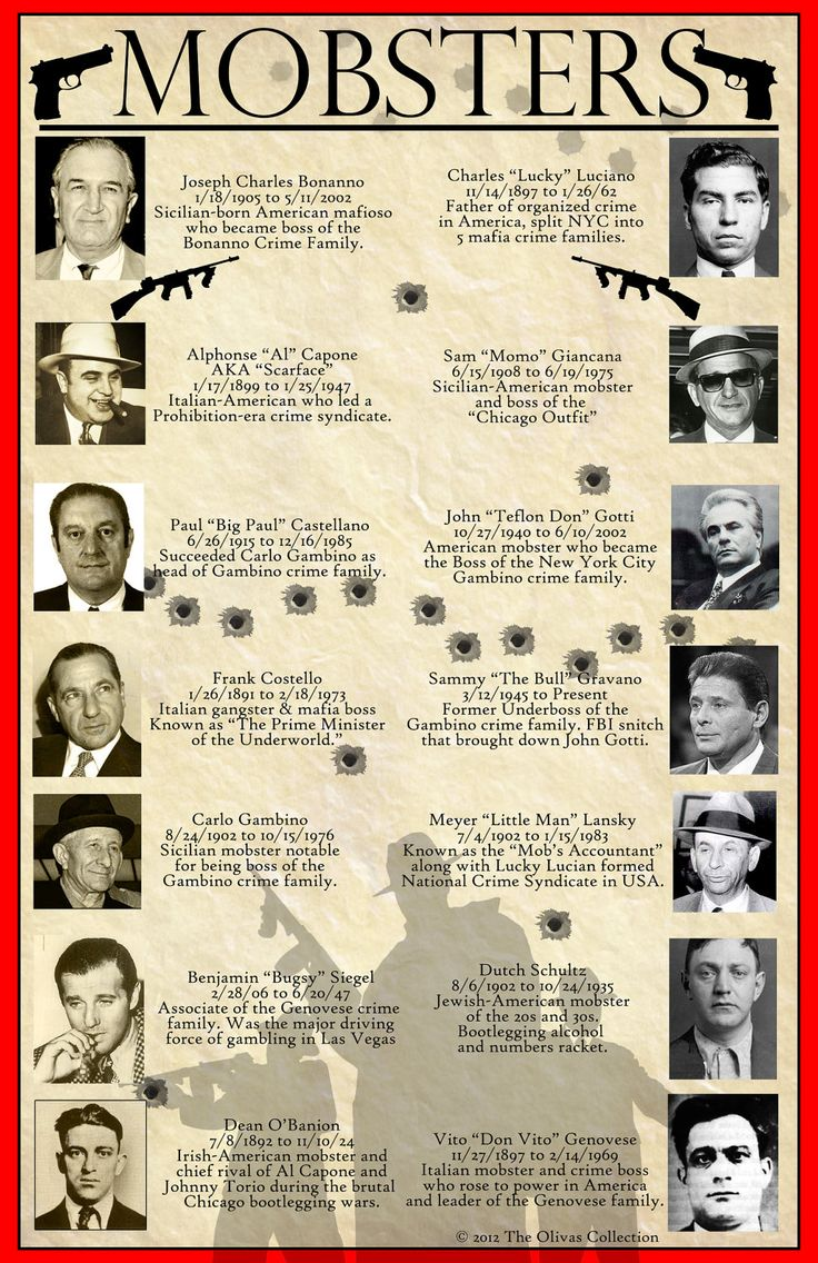 an analysis of the mafia and organized crime in the united states of america Compare that to estimates of pure revenue from other forms of organized crime like the drug trade and human trafficking: the organization of american states estimates that the revenue for cocaine.