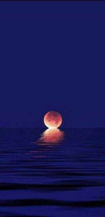 Moon kiss estar ahi seria mi mayor deseo
