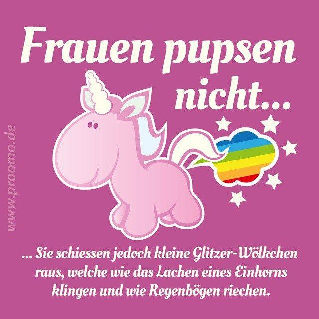 Einhörner Pupsen Regenbogen