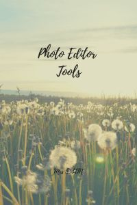 Blog Tips   Photo Editor Tools   Apps to decrease the size of your photos   How to help your page load speeds   Photo Optimiser   How to batch edit photos