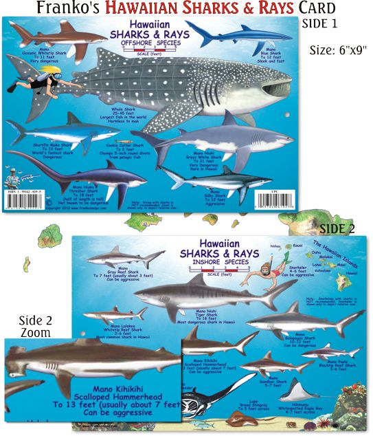 1000 images about hawaii fish cards on pinterest for Types of fish in hawaii