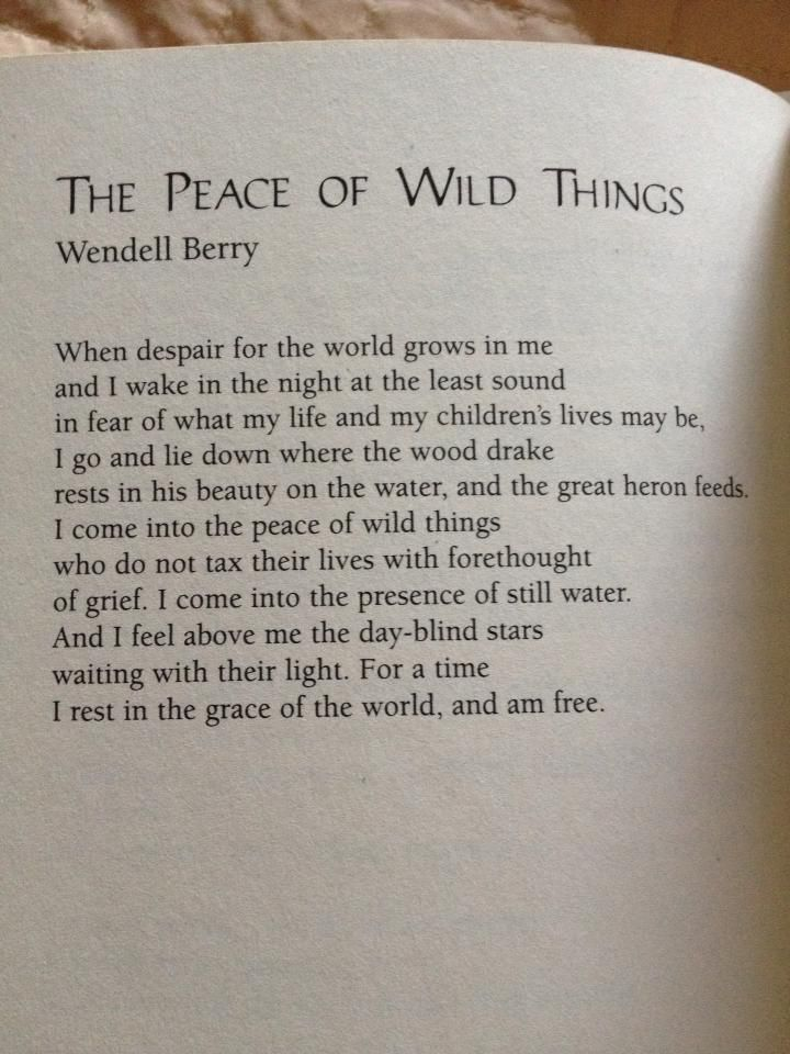 """When despair for the world grows in me...I come into the peace of wild things."" ~ Wendell Berry"