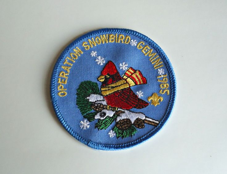 Vintage Boy Scouts Patch Operation Snowbird Gemini 1985 Embroidered Badge by treasurecoveally on Etsy