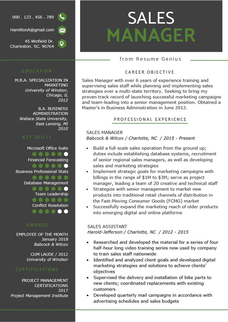 sales manager resume sample  u0026 writing tips