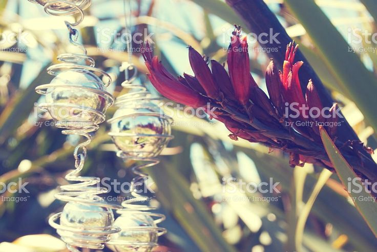 Kiwiana Christmas, Flax with Christmas Decorations royalty-free stock photo