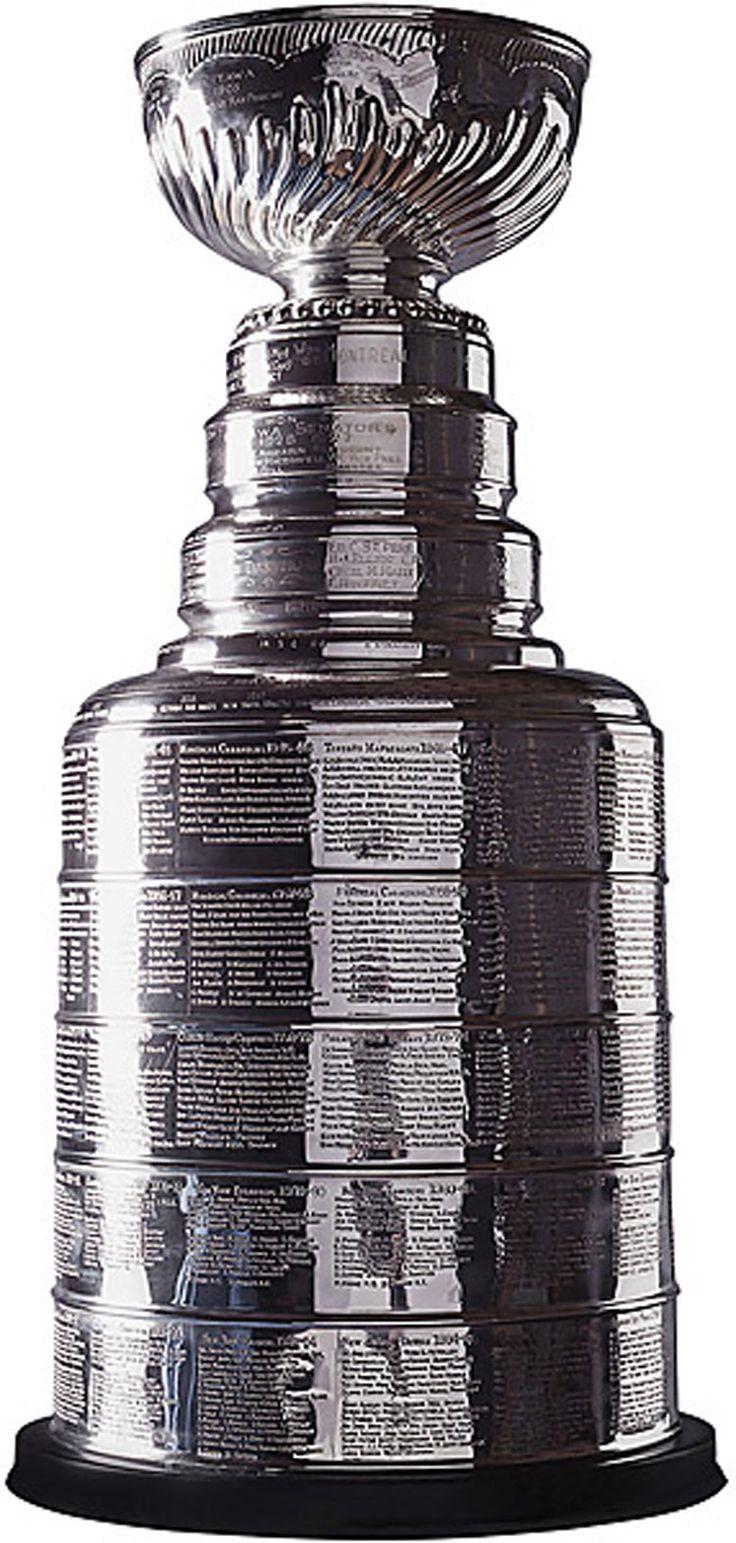 STANLEY CUP La Coupe Stanley, d'abord appelée Dominion Hockey Challenge Cup, est décernée chaque année par la Ligue nationale de hockey à l'équipe championne des séries éliminatoires. Même si elle n'en a pas le statut officiel, elle est tout de même considérée comme l'emblème de la suprématie au hockey. La Coupe Stanley est aujourd'hui le symbole le plus respecté du hockey professionnel et demeure le plus ancien trophée d'Amérique du Nord, tous sports professionnels confondus