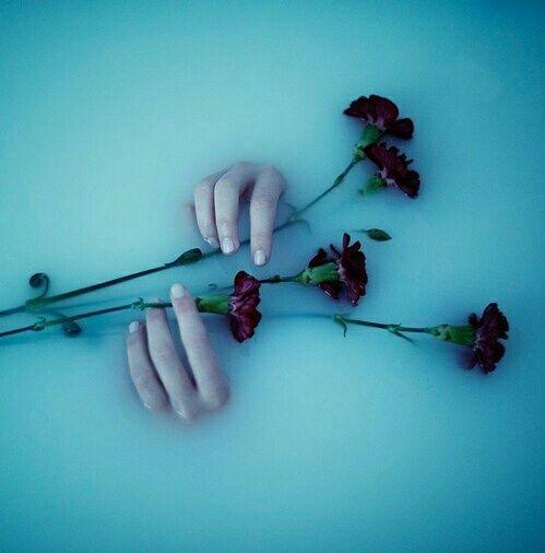 Imagem de flowers, rose, and grunge