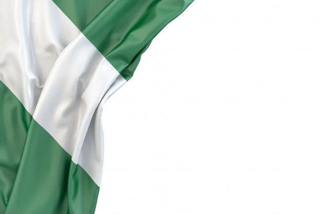 Flag Of Nigeria Nigeria Flag Nigerian Flag Flag
