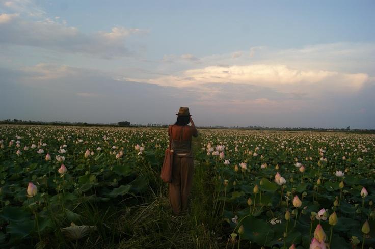 Cambodia  Photography Nicolas Guyard