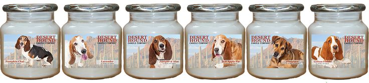Arizona Basset Hound Rescue, Inc. provides veterinary care, food, support, and shelter to Basset Hounds, Bloodhounds and Basset Hound mixes needing assistance in Arizona. We treat these animals as our own, with the utmost care and respect and make decisions based on compassion for the quality of life these Basset Hounds, Bloodhounds and Basset Hound mixes will enjoy while in our care.  Share the Light and Share Our Story... For more information, please visit: www.AZBassetRescue.org