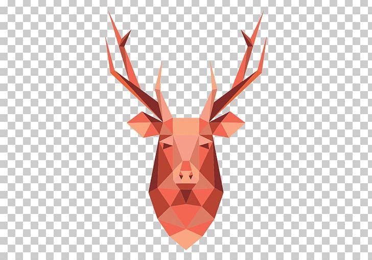 Reindeer Red Deer Antler Portable Network Graphics Png Antler Cartoon Cartoon Head Deer Encapsulated Postscript Deer Antlers Deer Reindeer