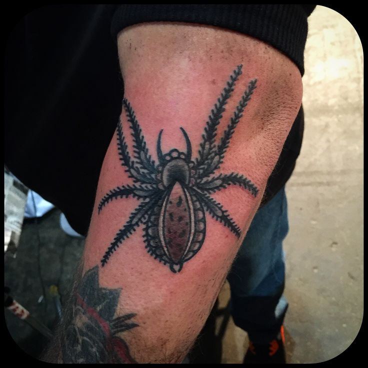spider tattoo, 77 ink