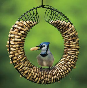 """A Bird Feeder Designed From a Slinky """"Provides hours of entertainment as you watch your fine feathered friends hang in every direction while they wrestle peanuts from inside the feeder."""" you can buy it for 22.95 or make it for an old slinky and a hanger."""