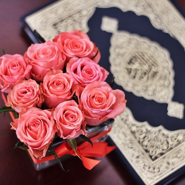 418 best images about Quran on Pinterest | Islam quran ... Quran Quotes About Peace