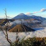 Taman Nasional Bromo Tengger Semeru Jawa Timur | http://wisata-bromo.com/