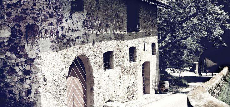 Panholzerhof, Kaltern Südtirol Sehr lecker!