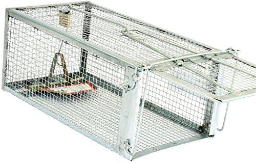 Pest Control Traps - TheAtomicBarbie Rat Trap  Small Animal Humane Live Cage *** You can get additional details at the image link. (This is an Amazon affiliate link)