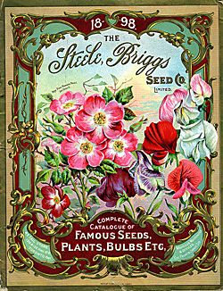 Steele, Briggs Seed Co., Ltd.