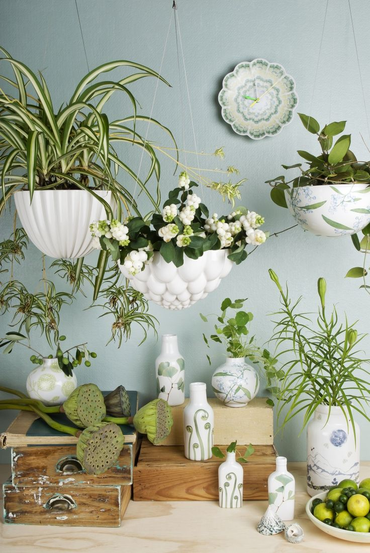 Hanging Planters 144 Best Hanging Wall Planters Images On Pinterest Gardening