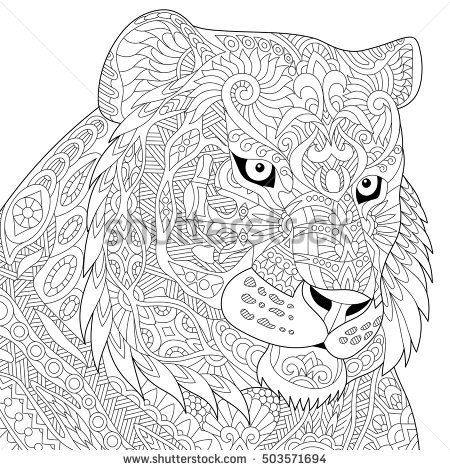 how to draw a cow stylized tiger wildcat isolated on white 6778