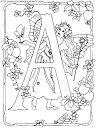 picasa - adely l - Picasa Web Albums