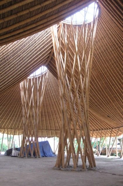 Brilliant bamboo interior, shows the curved, weaved and weft structure.