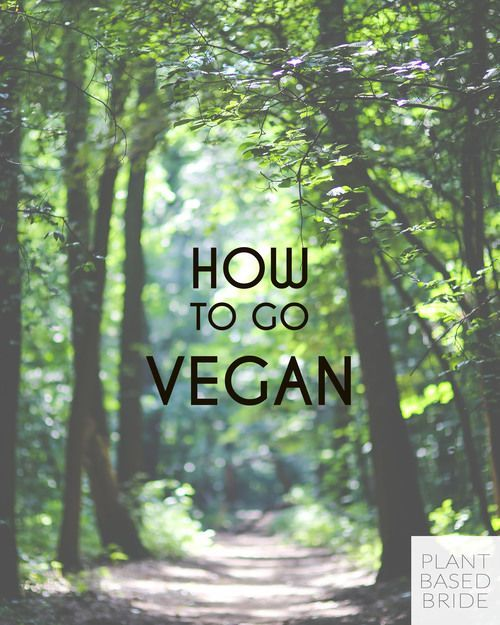At a loss for how to transition to veganism? Learn how to go vegan at plantbasedbride.com!
