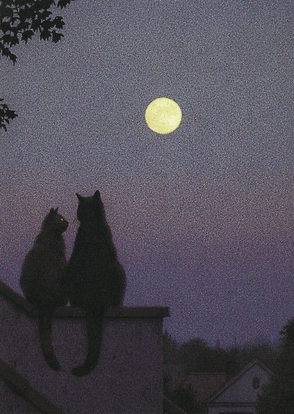 """Full moon  Postcard from the book """"Nero Corleone"""" by Elke Heidenreich with pictures by Quint Buchholz, Carl Hanser Verlag  Artist : Quint Buchholz"""