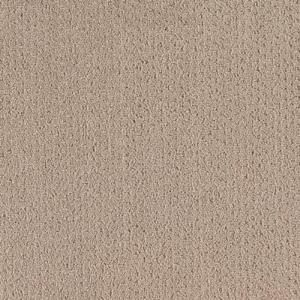 LifeProof Carpet Sample - Spirewell - Color Tender Taupe Pattern 8 in. x 8 in. MO-29913830 at The Home Depot - Mobile