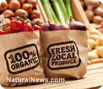 """Seven reasons you should eat organic..:Let food be your medicine and medicine be your food."""" Hippocrates    Learn more: http://www.naturalnews.com/036957_organic_food_farming_benefits.html#ixzz24njTsw6r"""