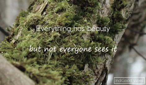Everything has beauty, but not everyone sees it.  Stop and appreaciate the beauty in life whever you may be. Enjoy it, challenge yourself to find it. :)  www.igv.node365.se