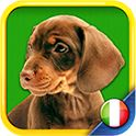 Toddler Italian: Ciao, Ciao!  Toddler Italian helps toddlers learn basic Italian words in a fun and entertaining manner; but more importantly, it helps toddlers become familiar with basic Italian sounds. In this app your little one will find: •entertaining and eye-catching images •Italian words' sounds for common objects easily applied in everyday life activities. •a manageable list of words crafted for toddlers with limited attention span and a great love for repetition  And more!