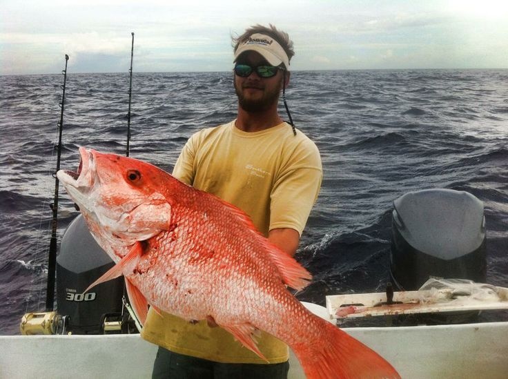 finally red snapper season in texas fishing redsnapper