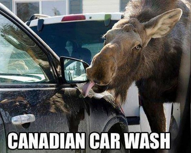 Meanwhile in Canada (16 Pics) - Canadian Carwash
